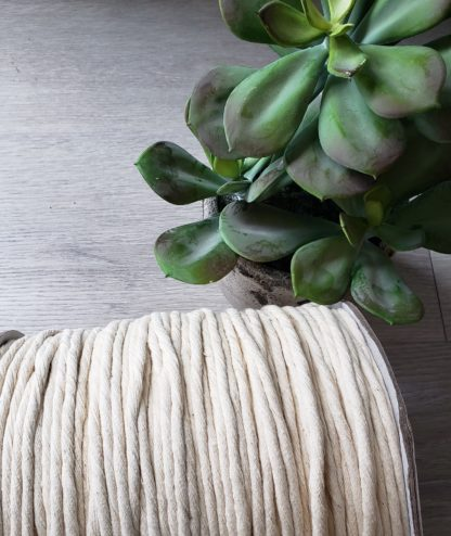 Natural premium cotton string for macrame and crafts