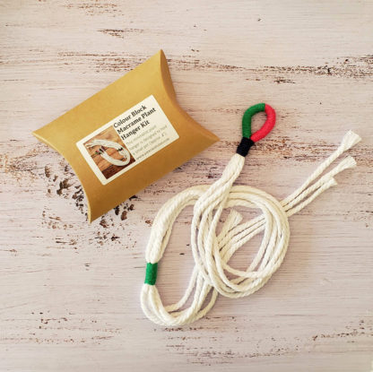 colour block plant hanger kit